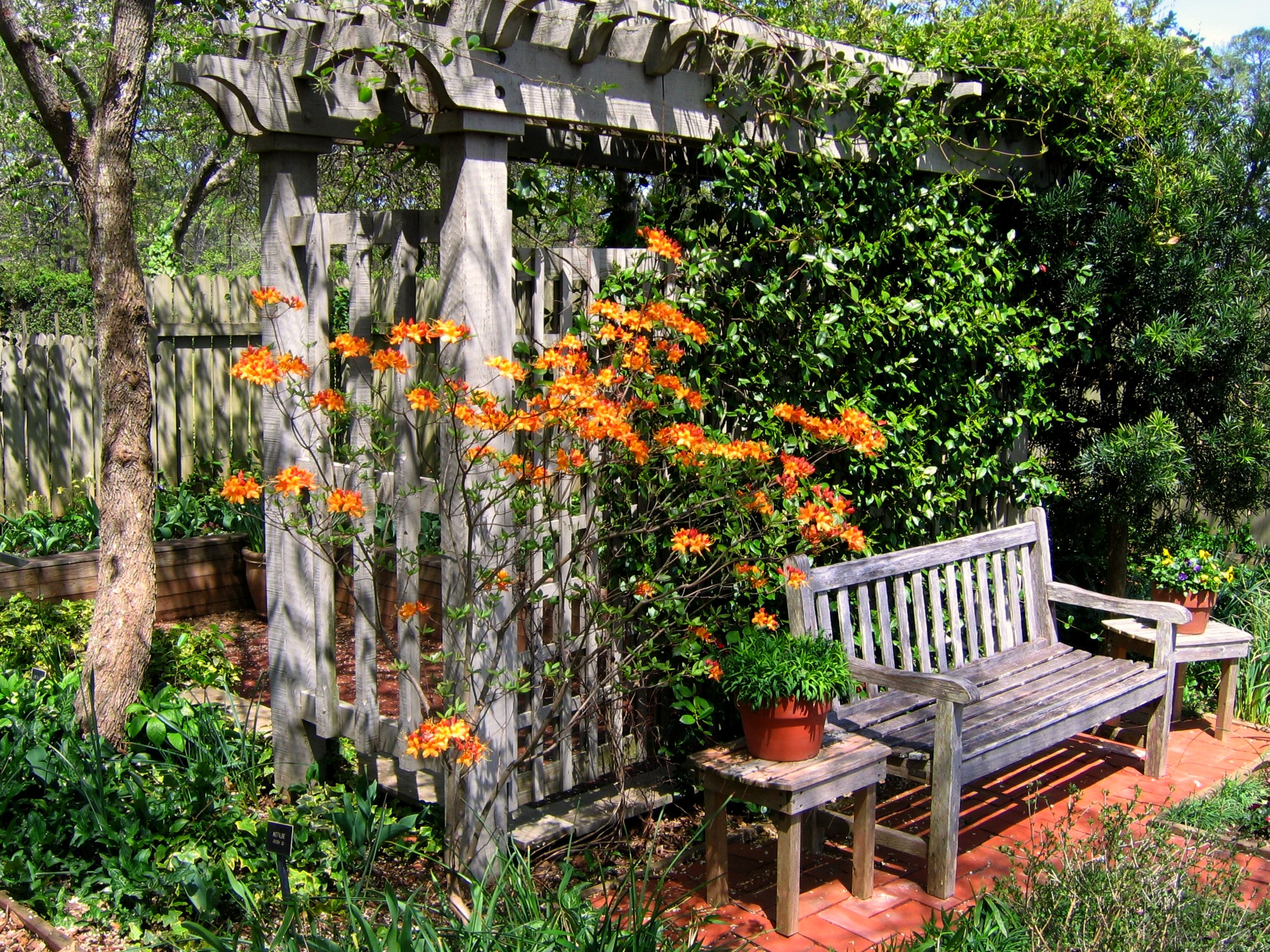 Garden Bench Arbor